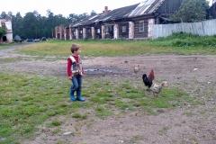 у фермы